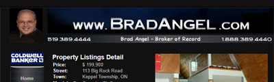 Brad Angel Real Estate